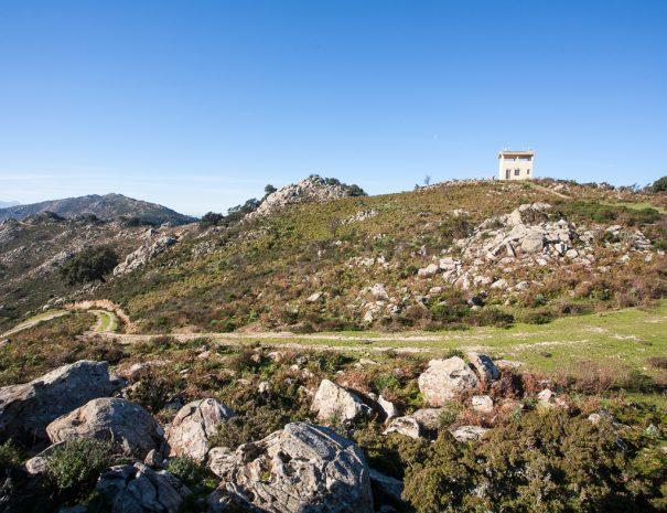 Sentiero mountain bike Pontesu